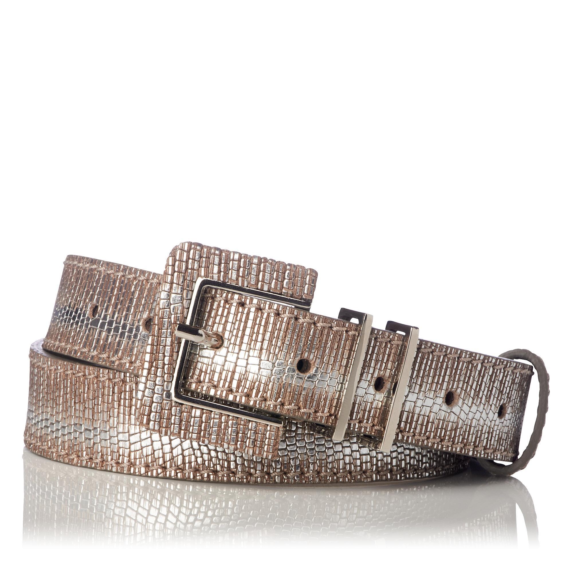 Gena Striped Silver Tejus Belt