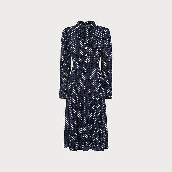 Mortimer Navy Dotted Silk Dress