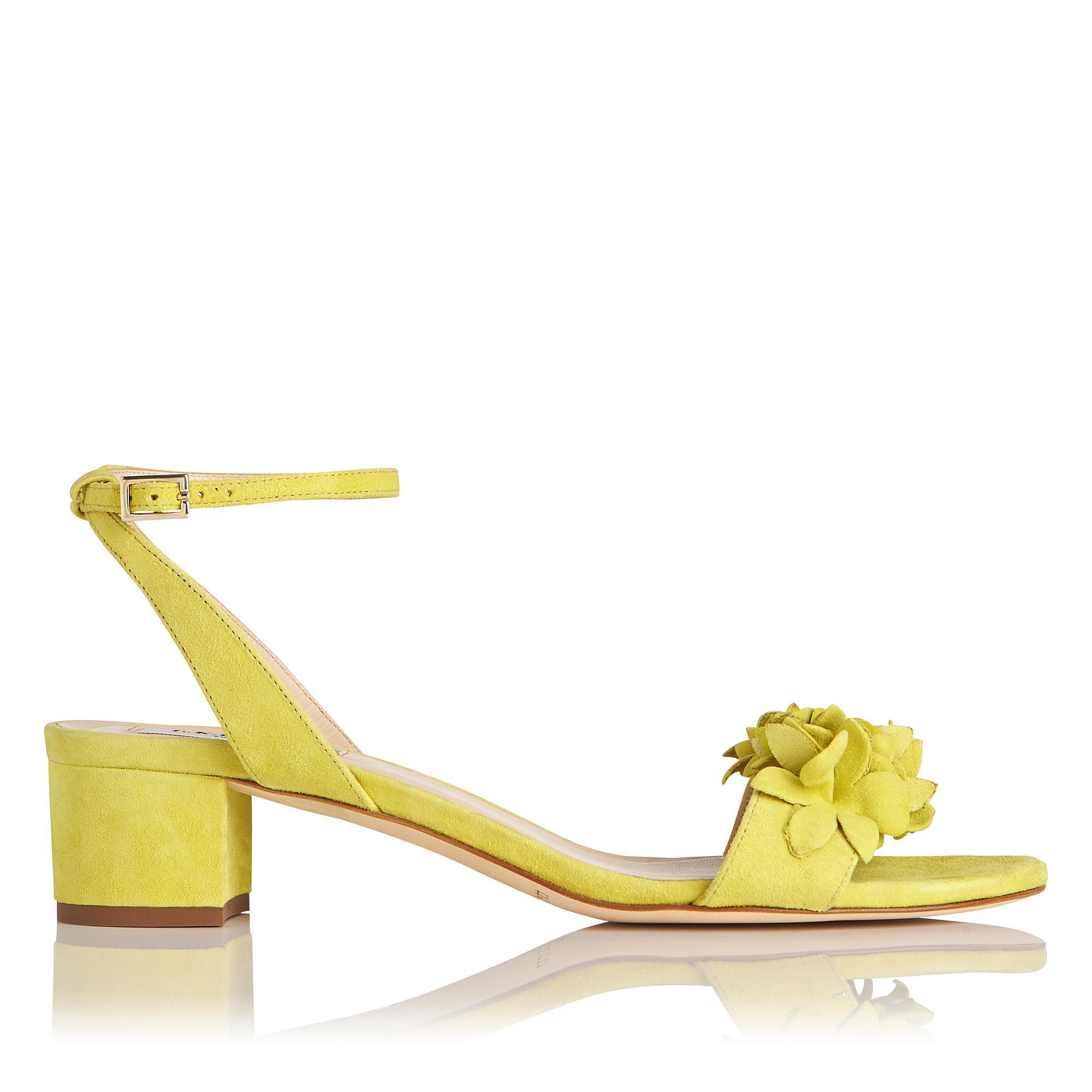 Coralie Lime Suede Floral Sandal