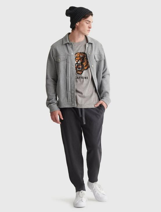 TIGER HEAD TEE, GREY, productTileDesktop