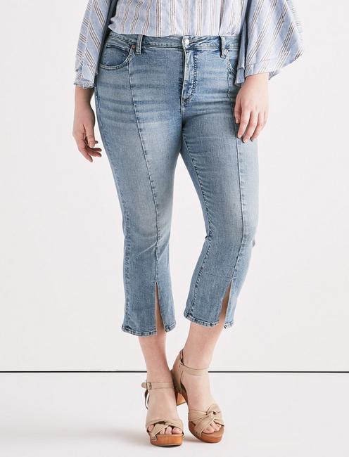 Plus Emma Mini Boot Jean,