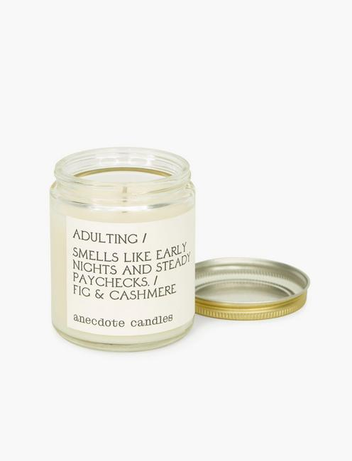 Anecdote Candles Adulting, MULTI