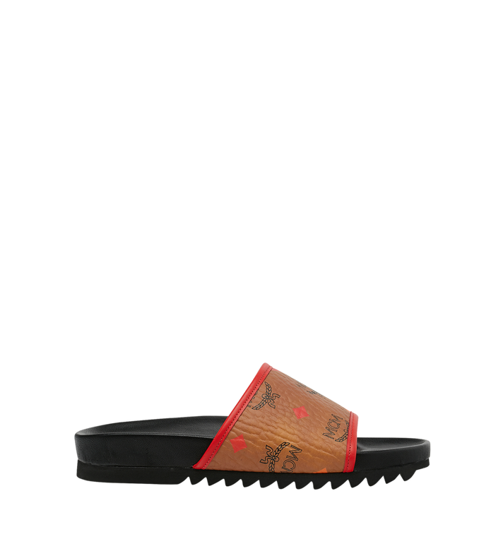 MCM SLIDES-WSPEKTRUM Alternate View 2
