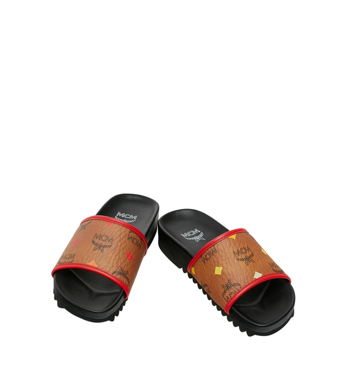 MCM SLIDES-WSPEKTRUM Alternate View 4