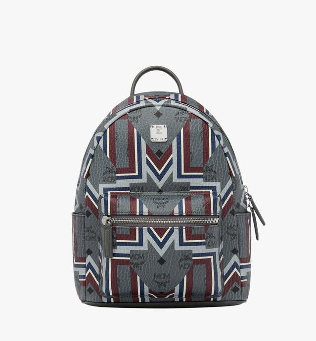 Stark Backpack in Gunta M Visetos