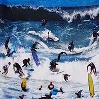 SURFERS LAGUNA BEACH