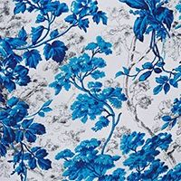 BLUE WASH/CAPRI