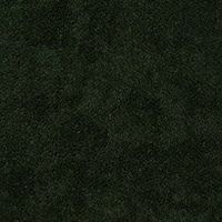 AMAZONIAN GREEN