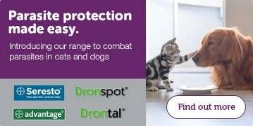 Drontal | Pets At Home