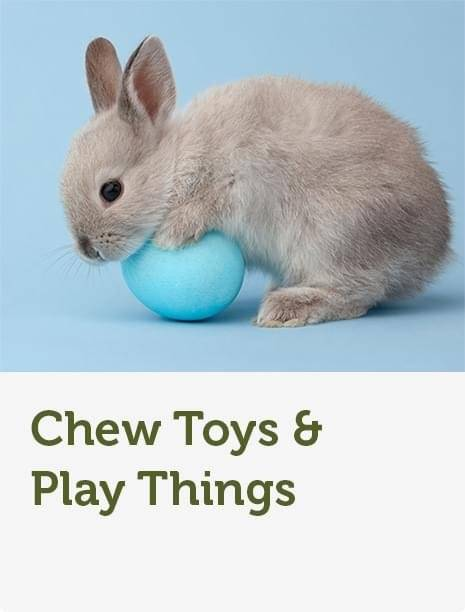 Rabbit Supplies Hutches Food Toys Pets At Home