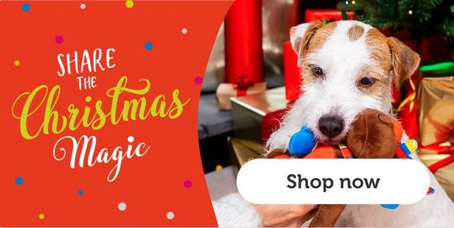 Christmas Presents For Cats Pets At Home