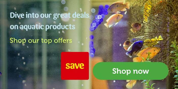 Pond Food Treatments Sticks Pellets Pets At Home