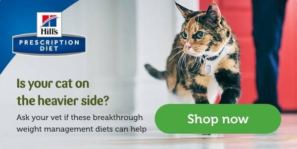 Vet Prescribed Cat Food Prescription Diet Food Pets At Home