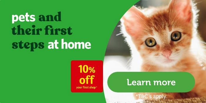 Kitten Flea Tick Wormers Worm Control Pets At Home