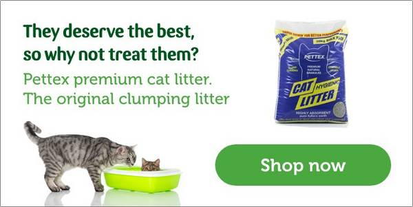 Litter Trays Accessories Cat House Training Pets At Home