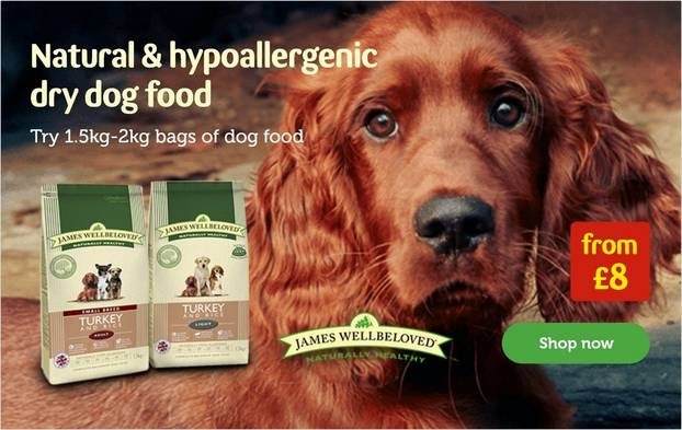 Dog Products   Food, Toys, Collars & Care   Pets at Home