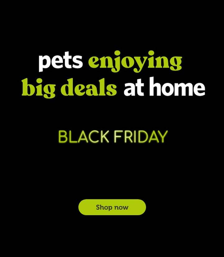 All Your Pet Shop Needs Here At Pets At Home