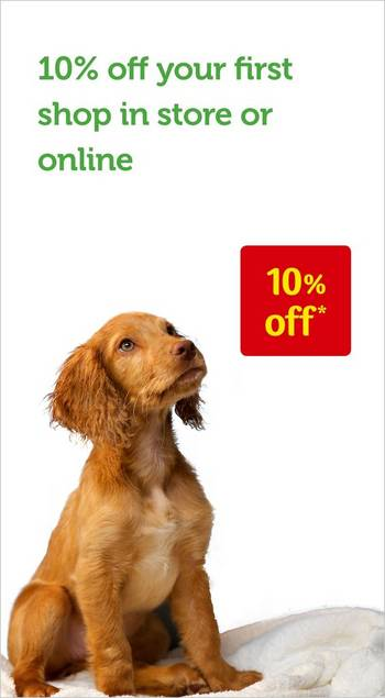 Store Locator Pets At Home