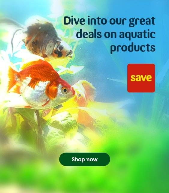 Fish Tanks & Supplies | Filters & Foods | Pets at Home