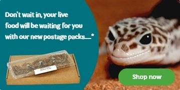 Reptile Food | Live Reptile Food From Pets At Home