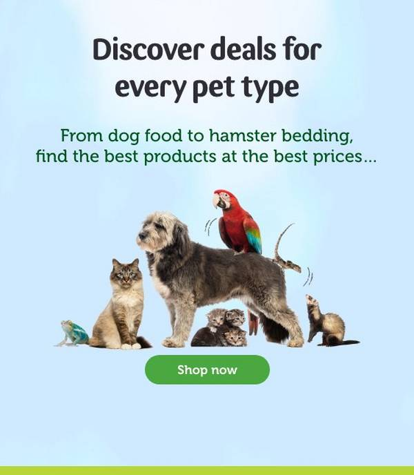 Reptile Supplies Live Food Vivariums Pets At Home