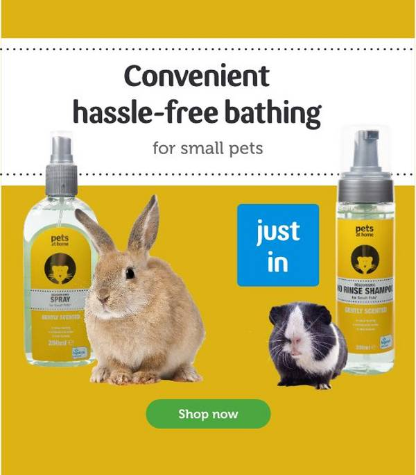Small Pet Products For Sale Pets At Home