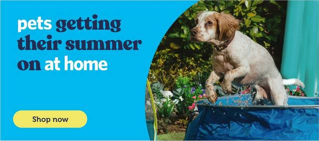 The Groom Room Pet Grooming Faqs Pets At Home