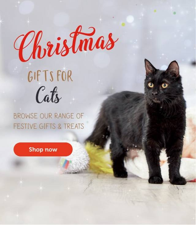 Cat Supplies Food Toys Collars Care Pets At Home