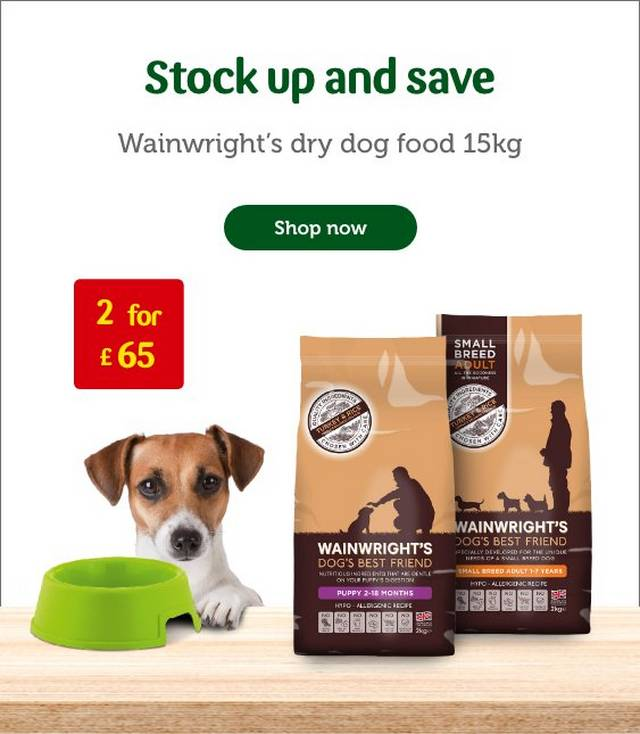 Dog Supplies Food Toys Collars Care Pets At Home