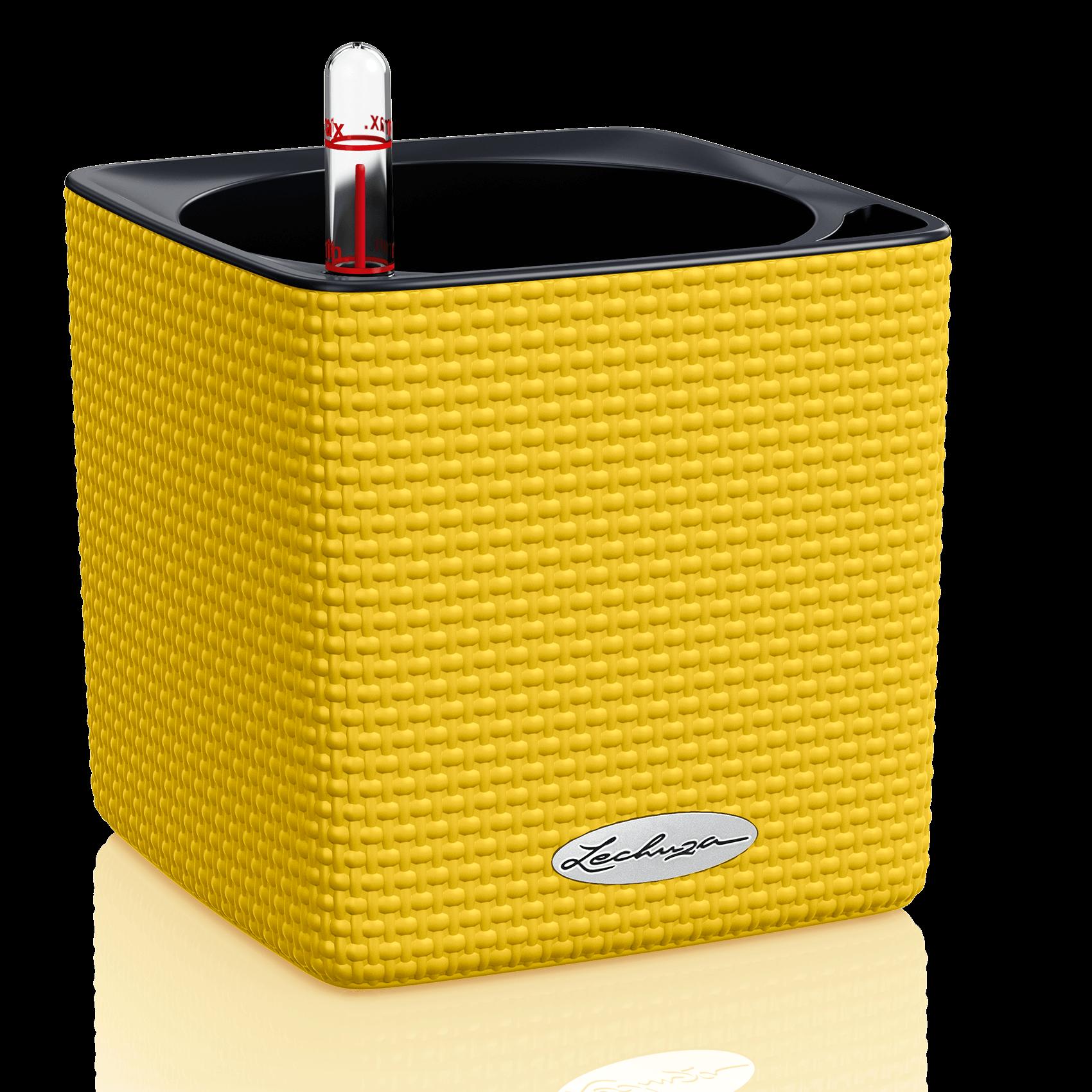 CUBE Color 14 amarillo limón