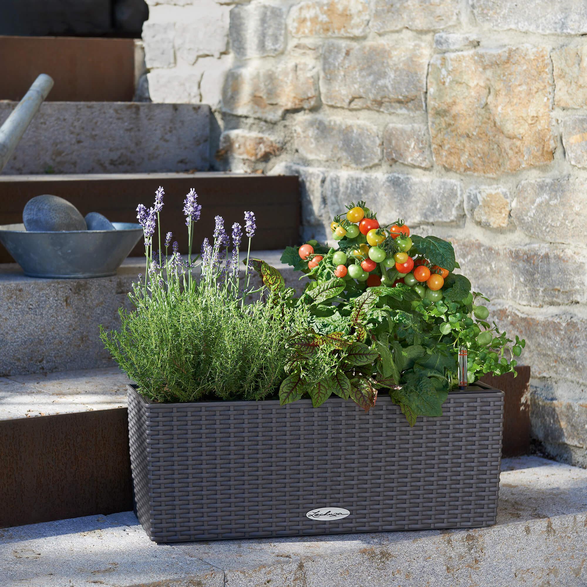 le_balconera-cottage50_product_addi_03