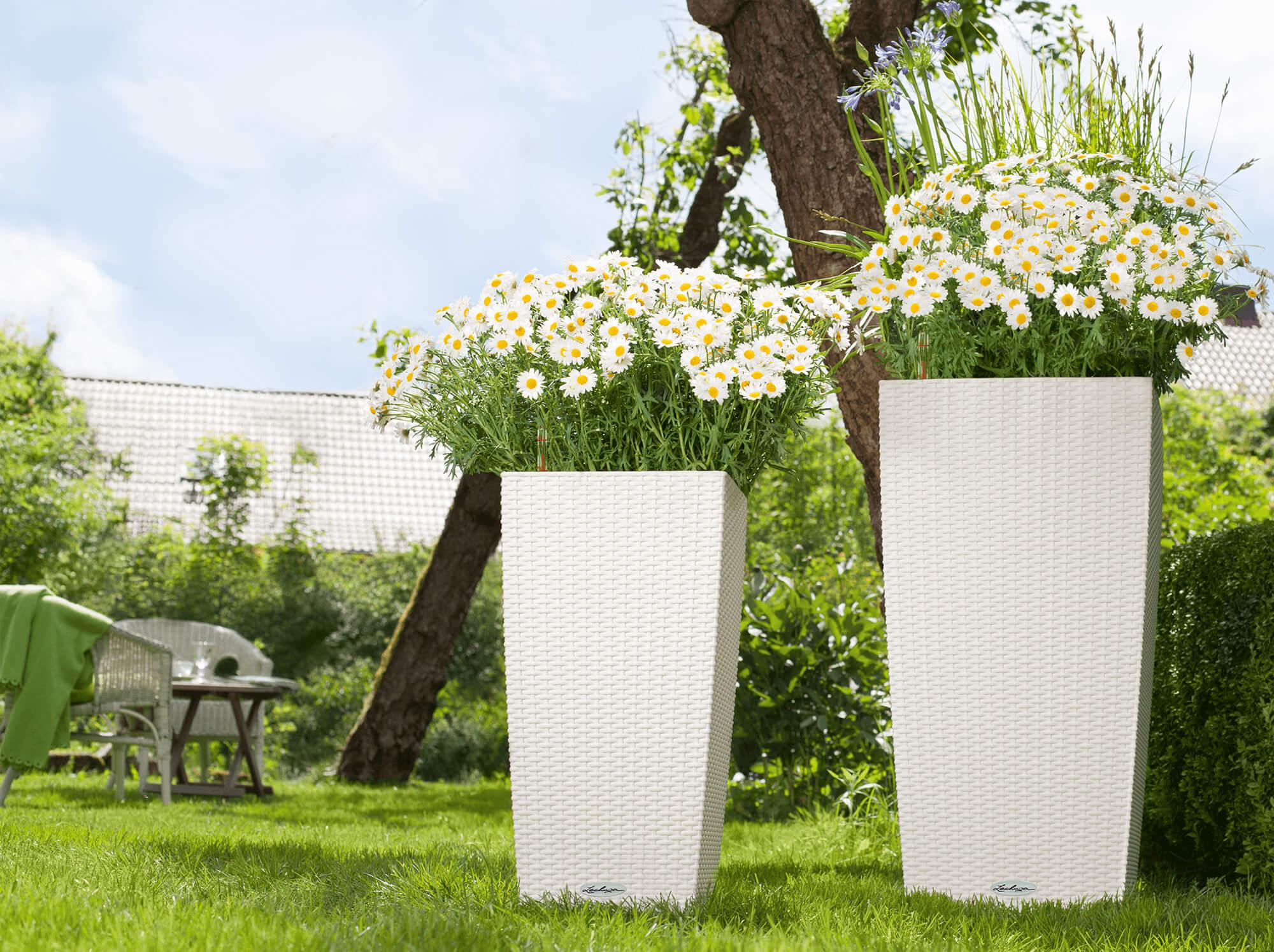 banner_sommer_trend_collection