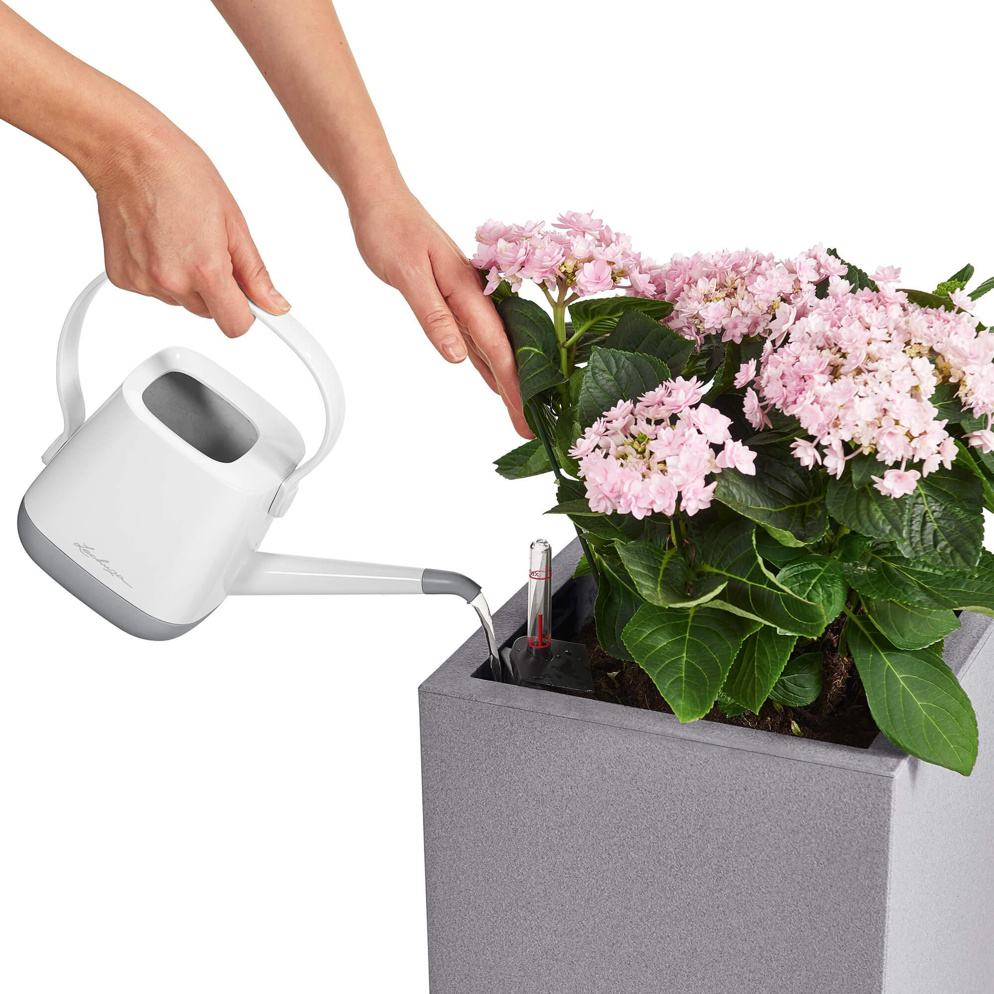le_canto-color-saeule_product_addi_watering