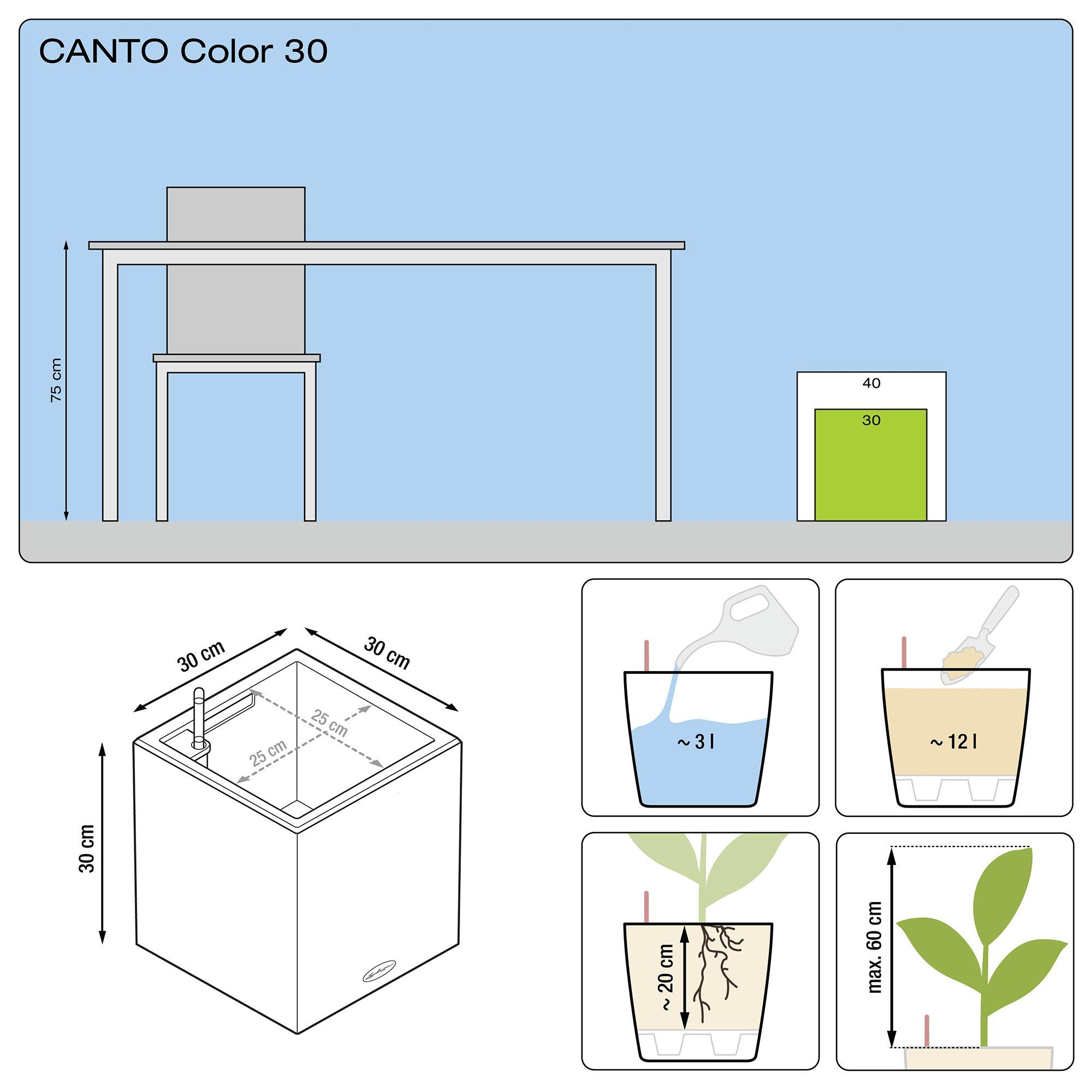 CANTO Color cube 30 sand beige - Image 3