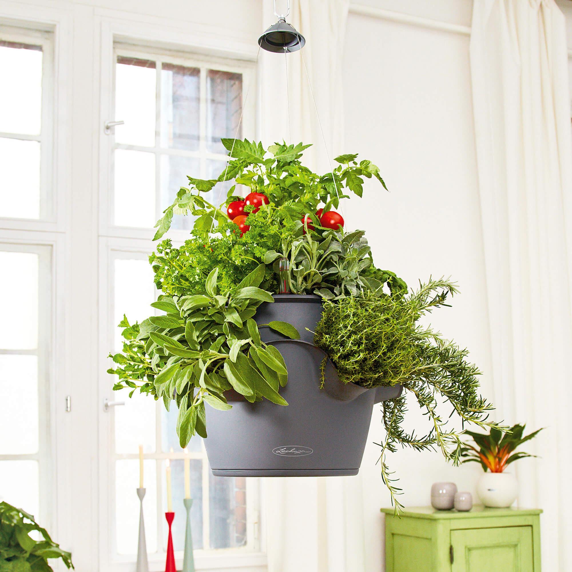 CASCADINO Color Single hanging planter slate - Image 3
