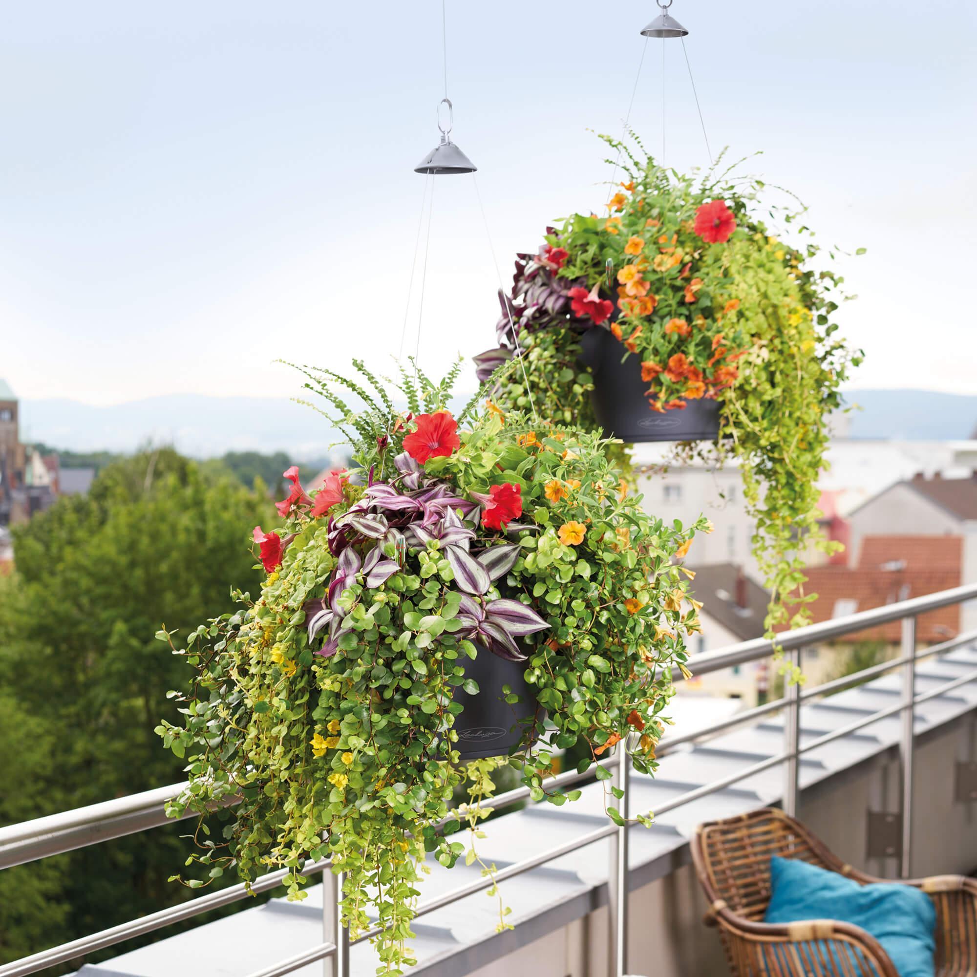 CASCADINO Color Single hanging planter slate - Image 4