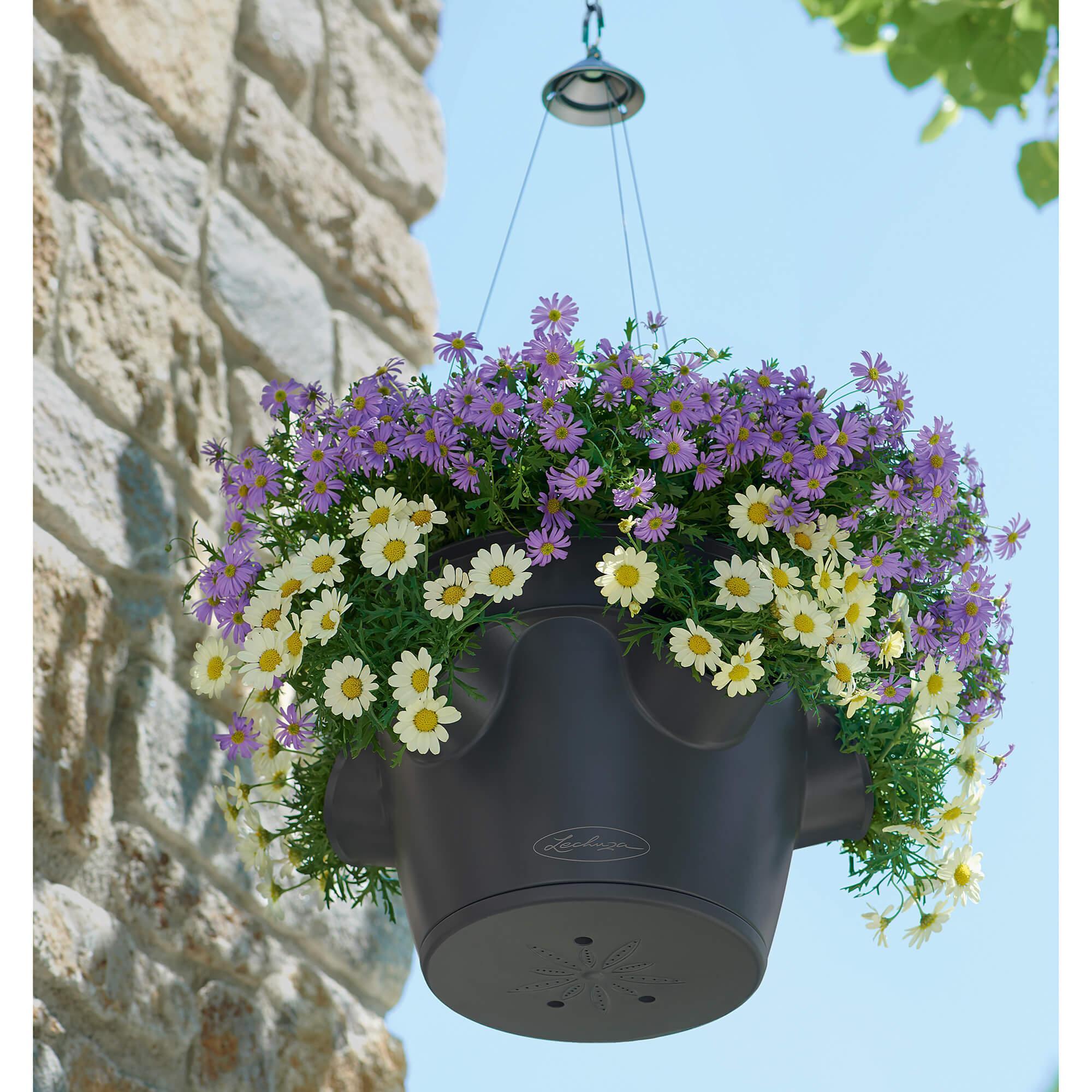 CASCADINO Color Single hanging planter slate - Image 6