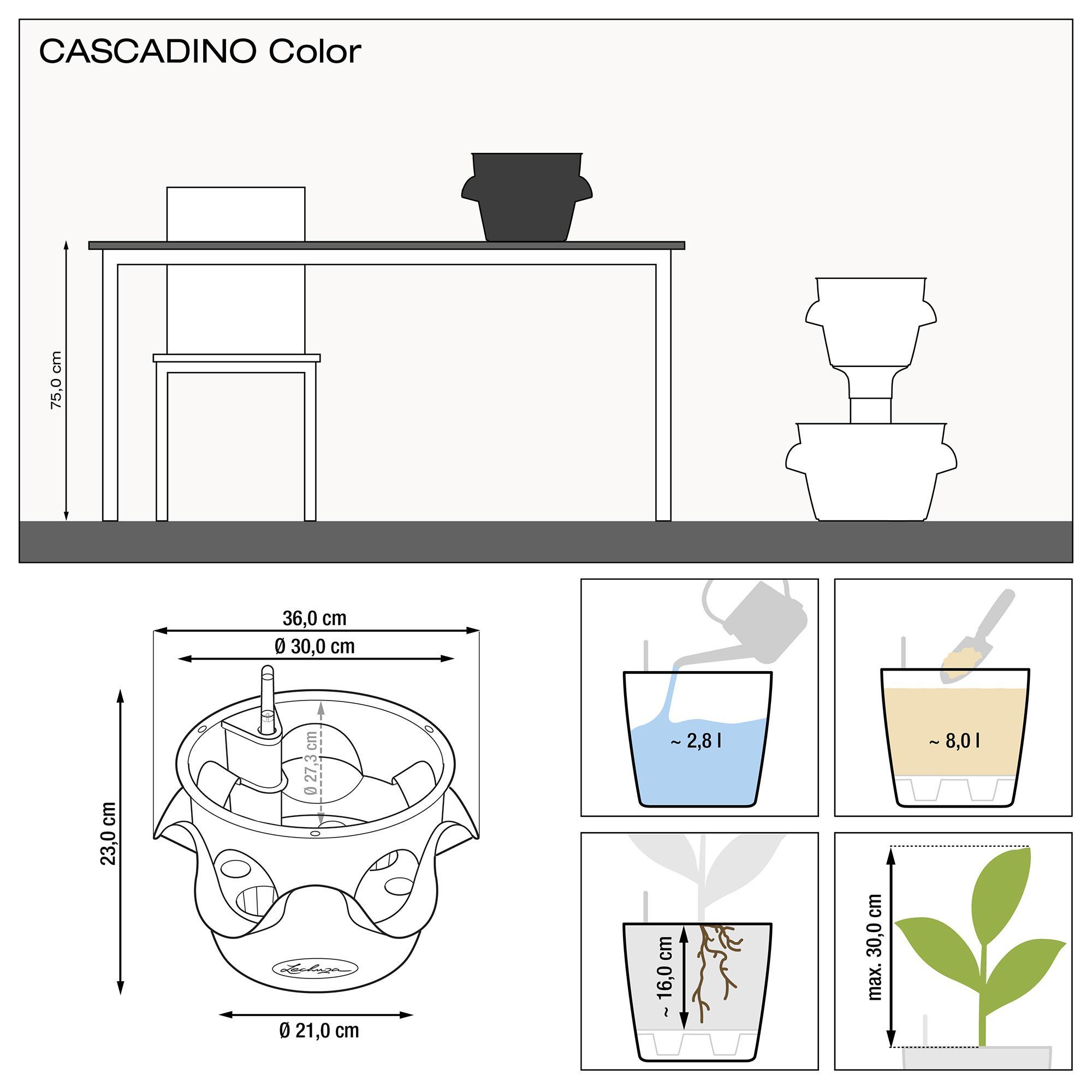CASCADINO Color vert pistache - Image 2