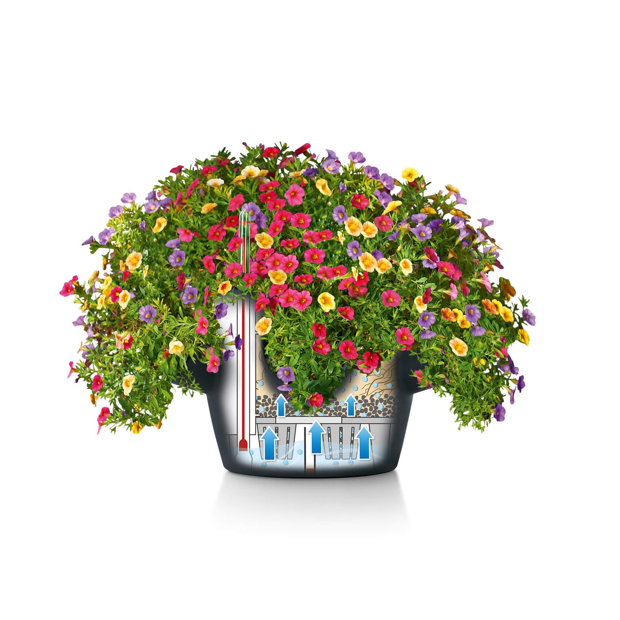 CASCADINO Color Single hanging planter slate - Image 7