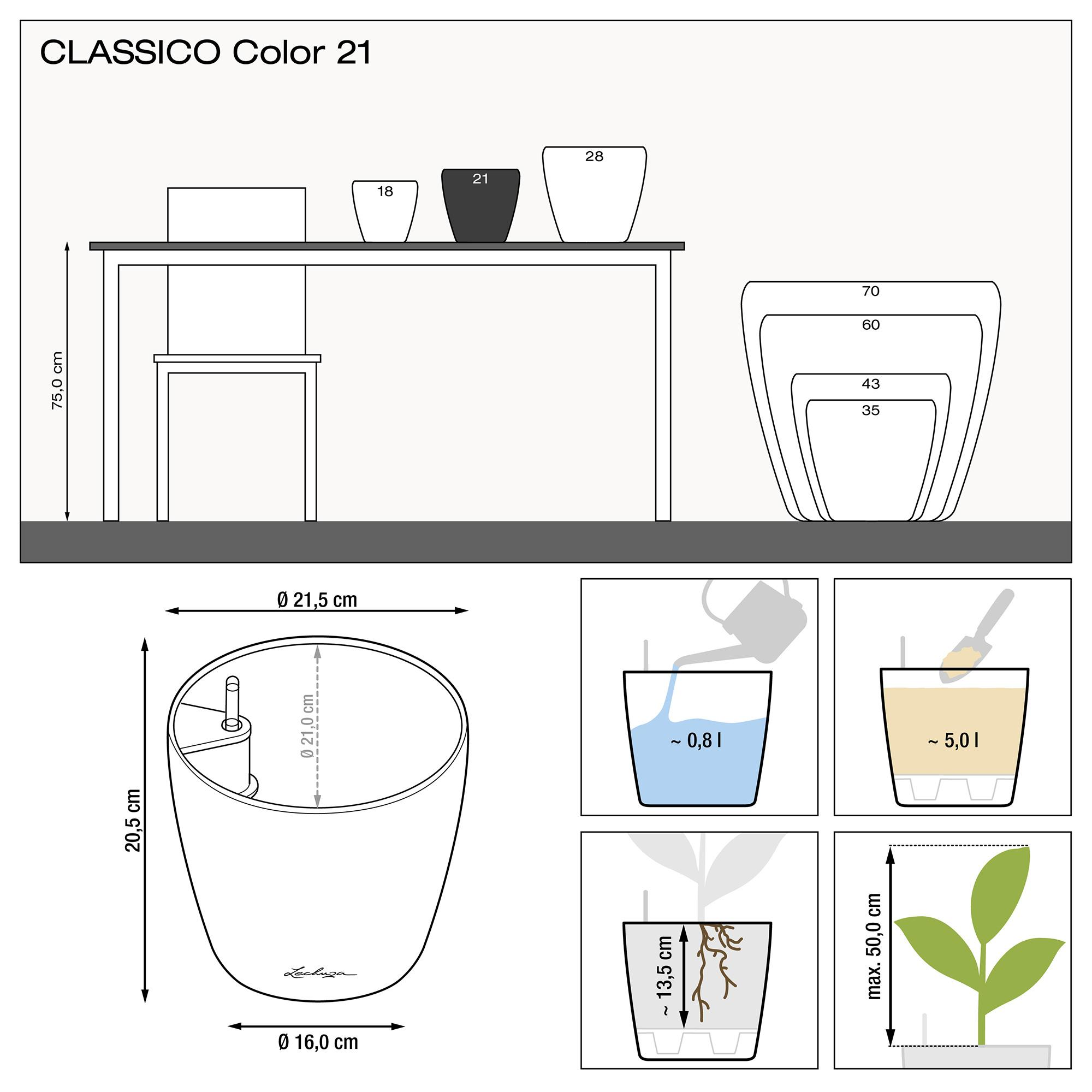CLASSICO Color 21 slate - Image 2