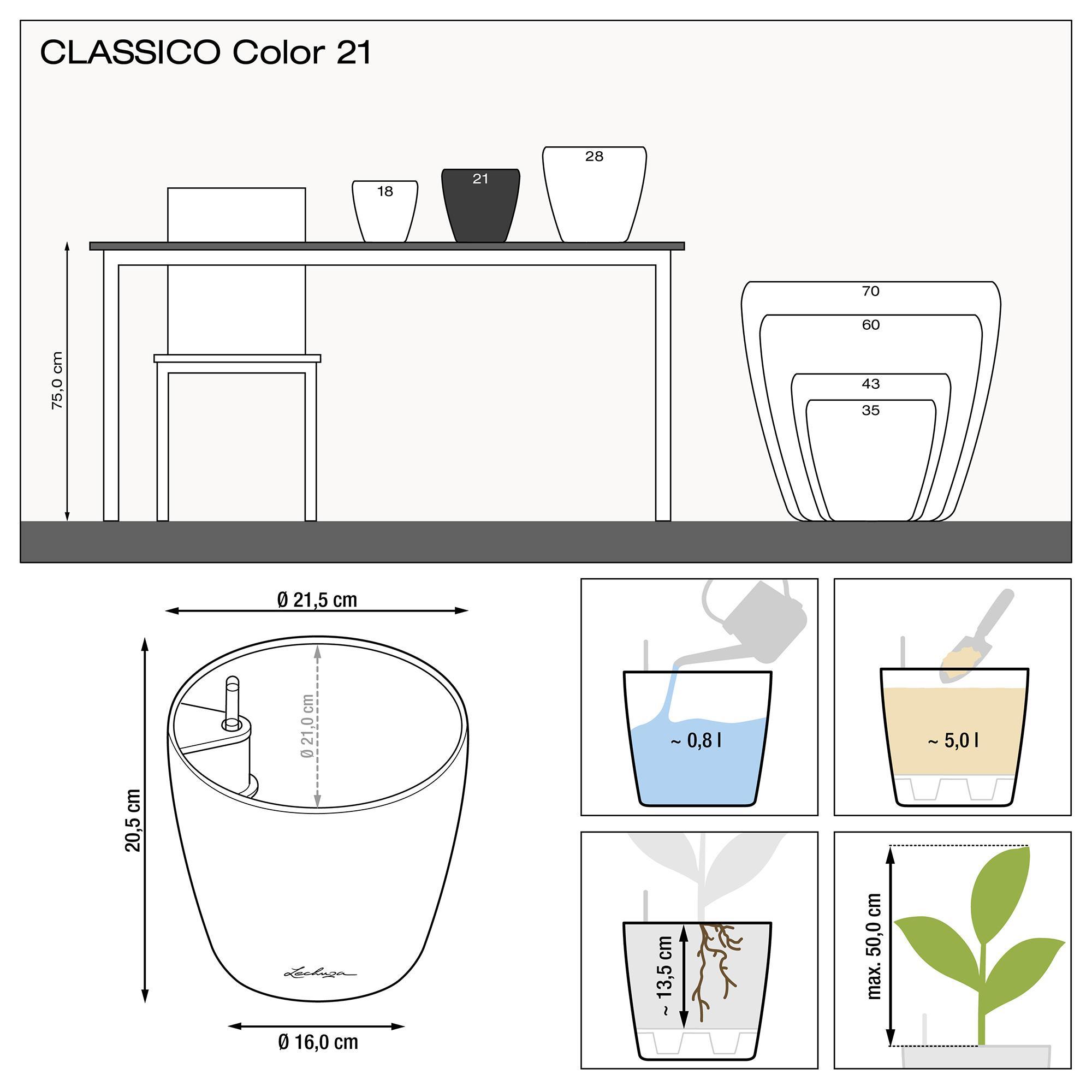 CLASSICO Color 21 gris pizarra - Imagen 2