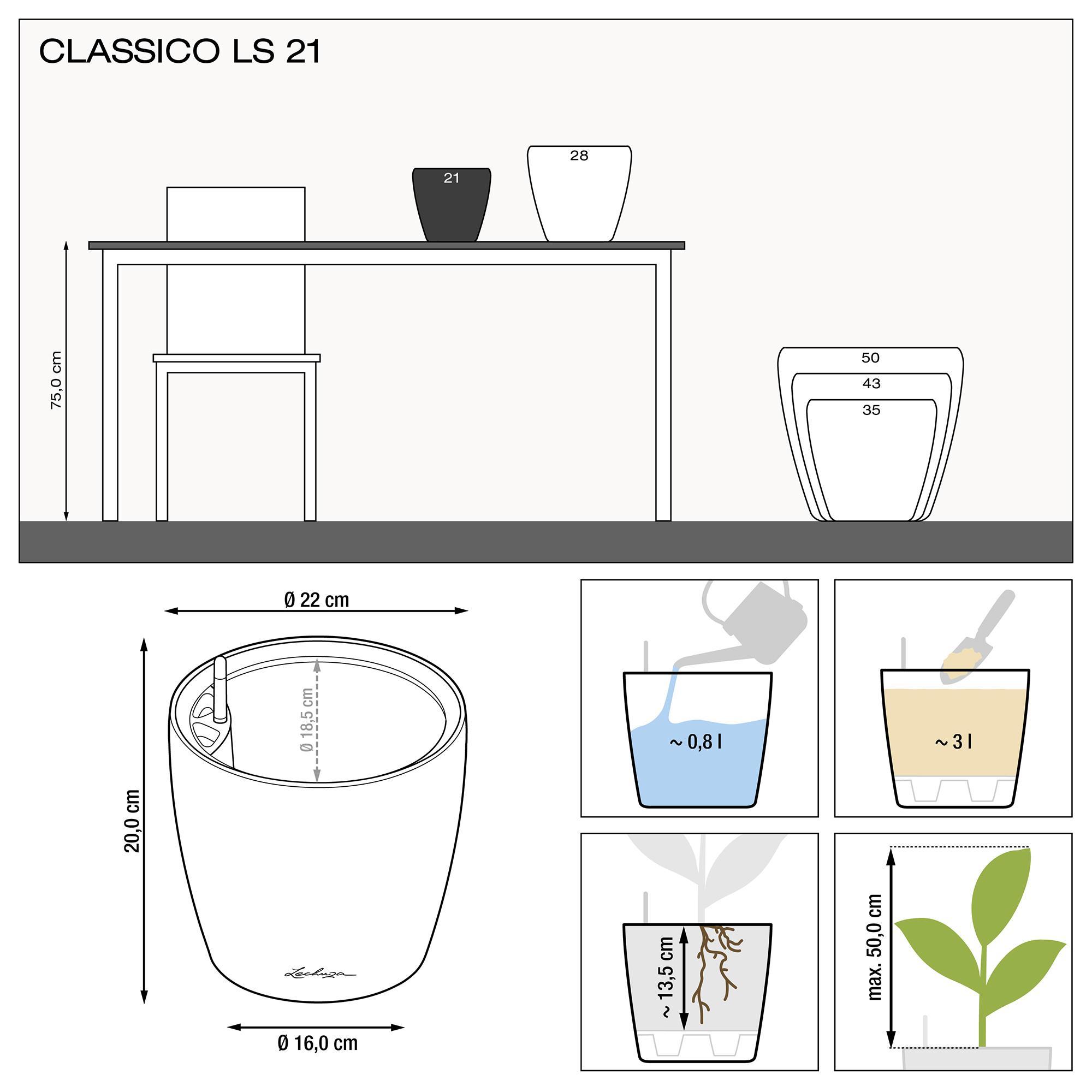 CLASSICO LS 21 silver metallic - Image 3
