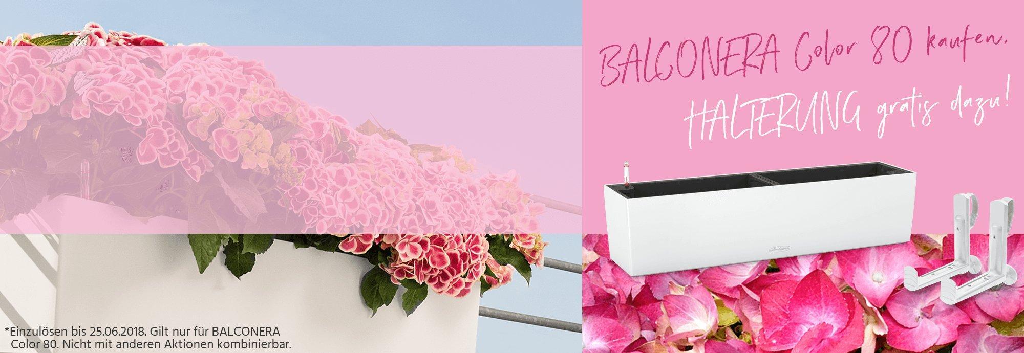 hero_banner_aktion_balconera-all-inclusive