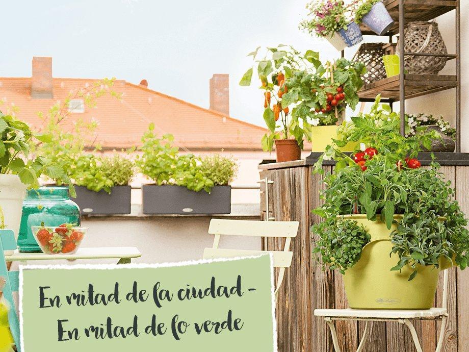 hero_banner_urban_gardening_xs_es