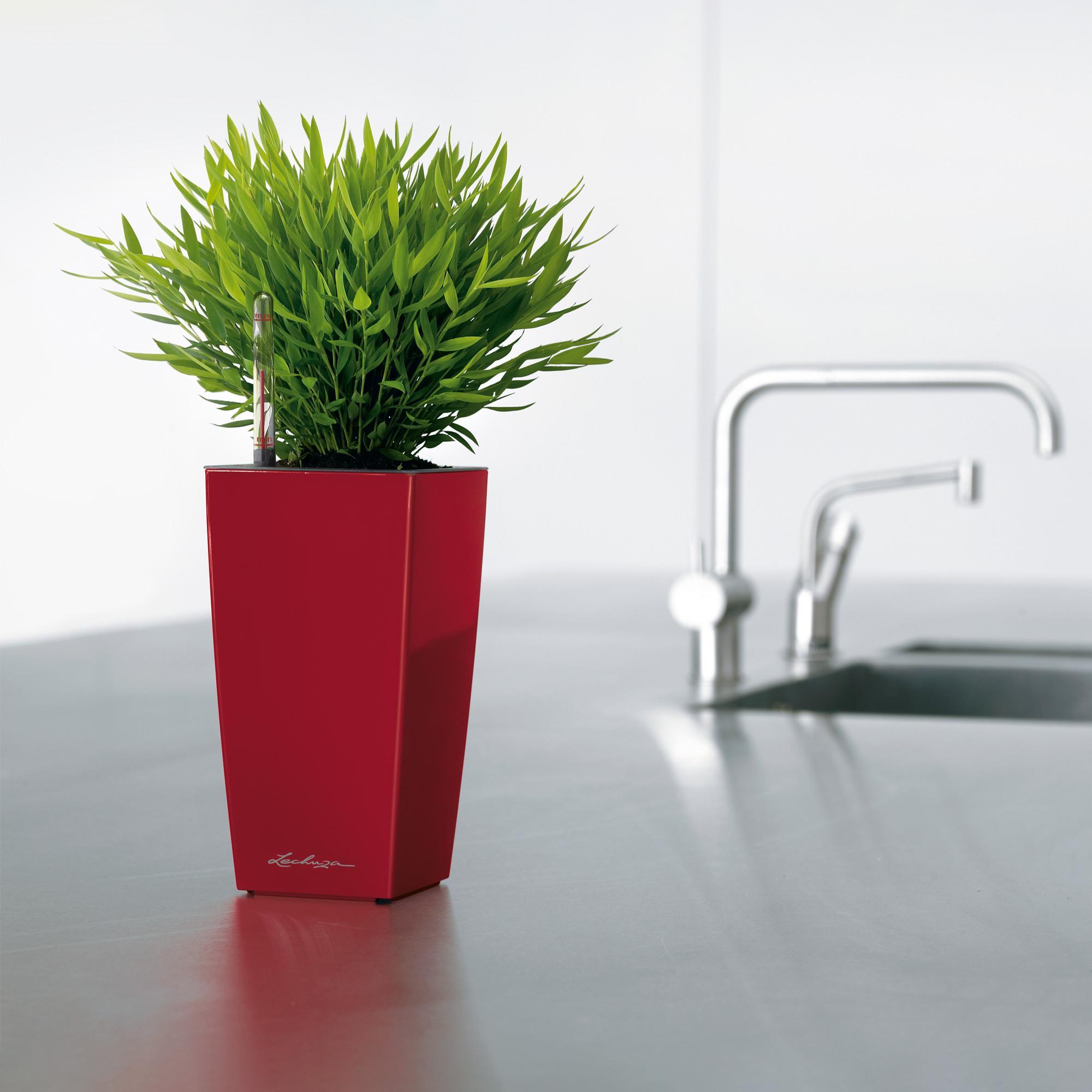 MAXI-CUBI pastel violet high-gloss - Image 6