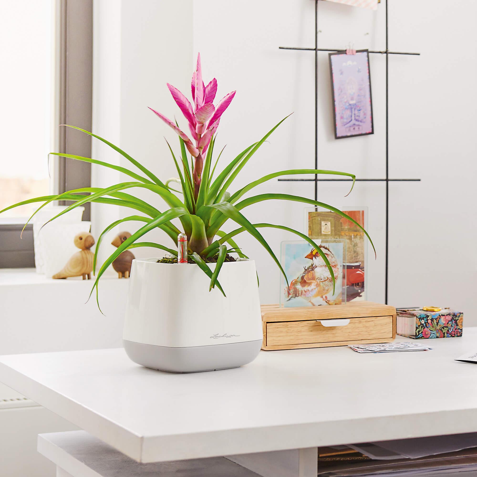 YULA planter white/gray semi-gloss - Image 5