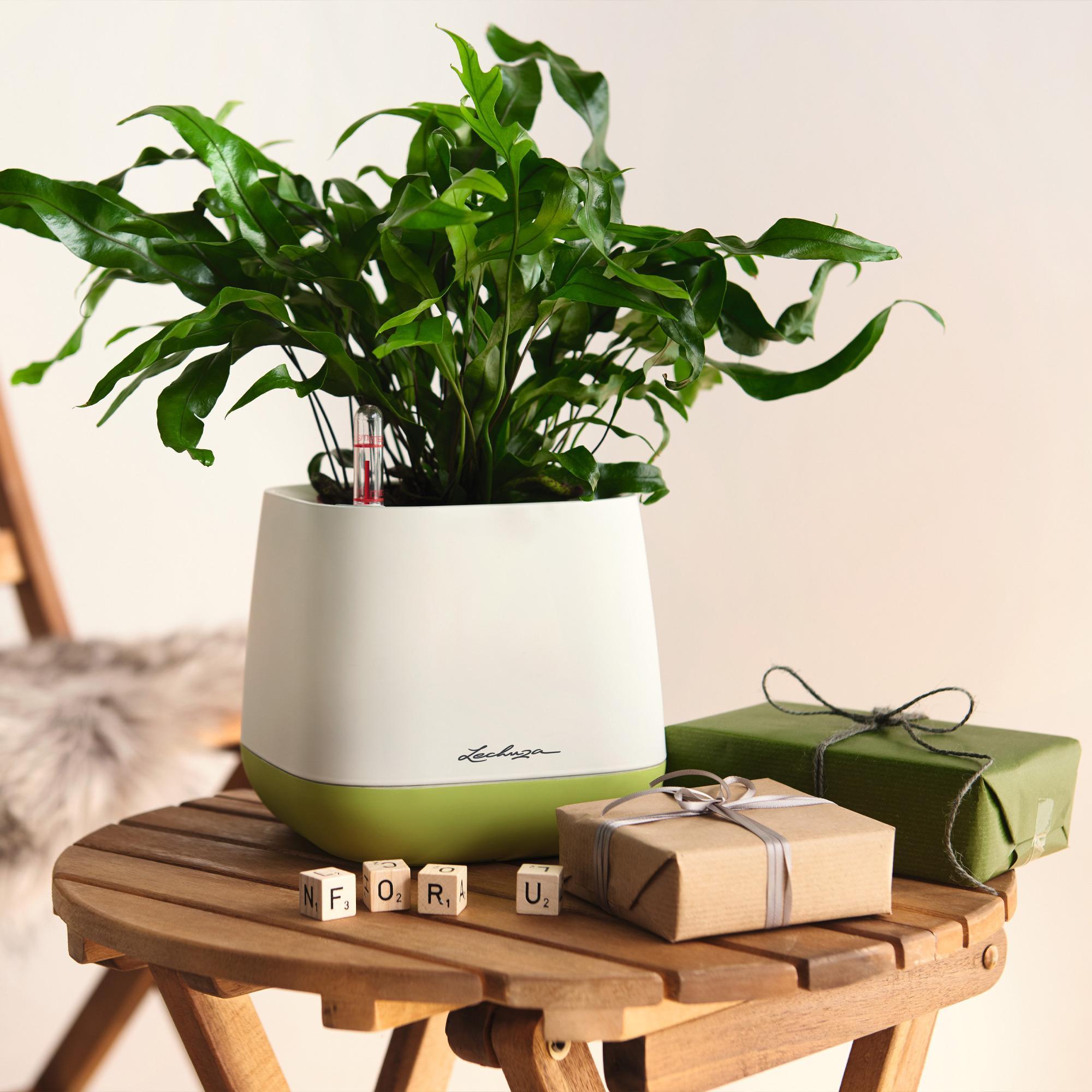 YULA planter white/gray semi-gloss - Image 7