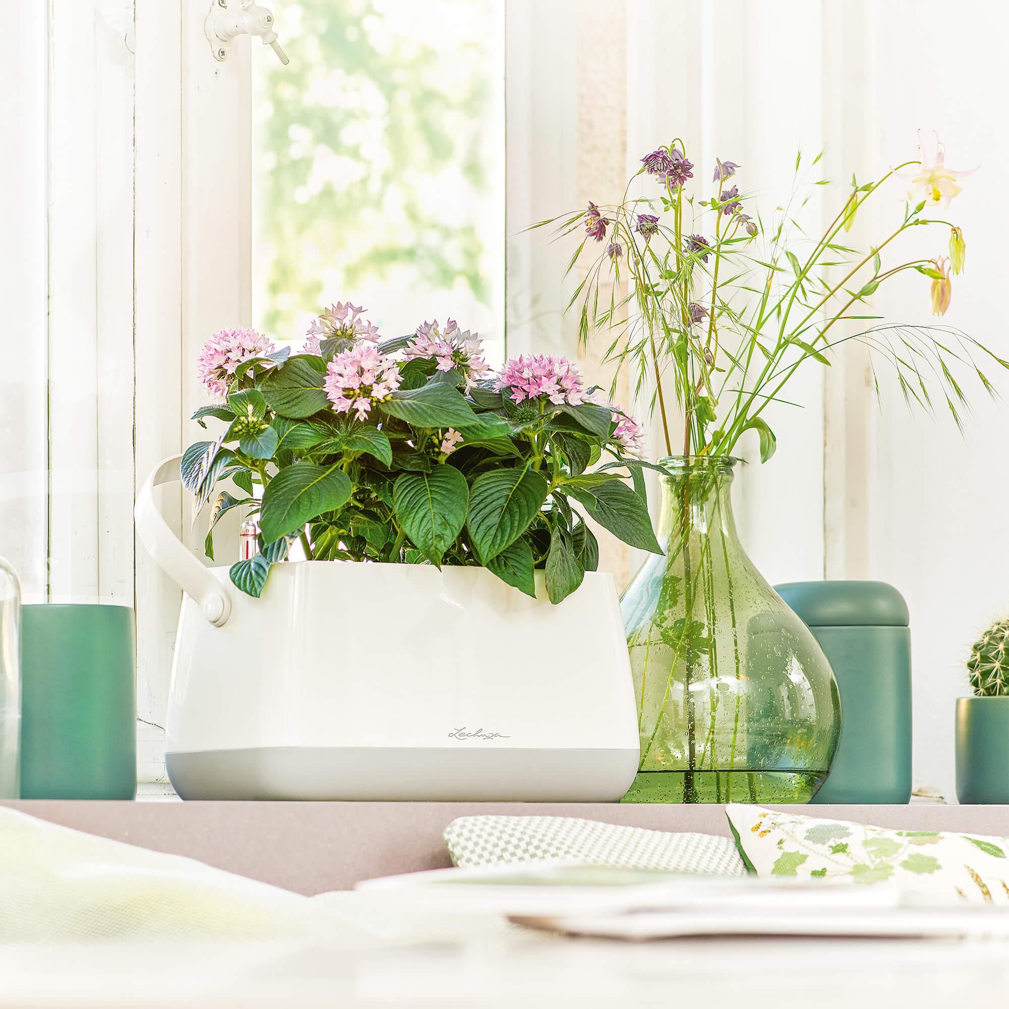 Maceta para plantar YULA blanco/gris satinado - Imagen 5