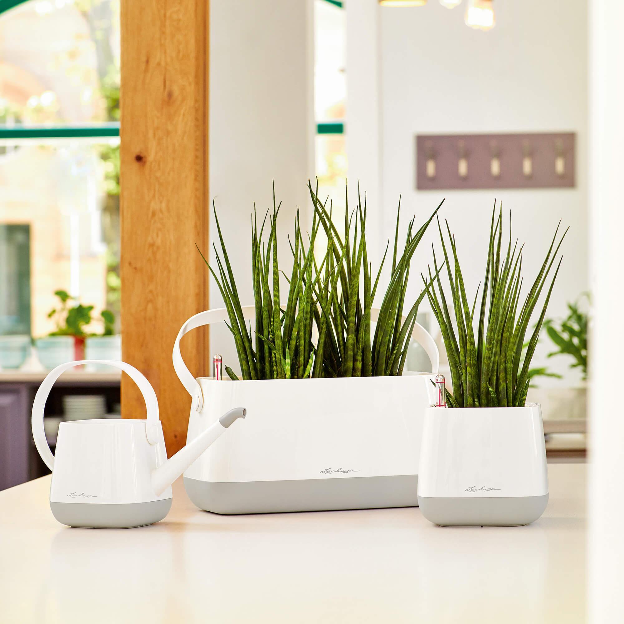 Корзинка для растений YULA белый/серый - изображение 7