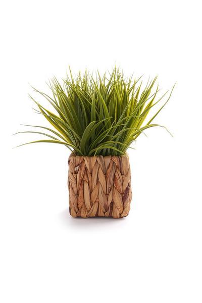Wicker Faux Plant